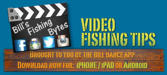 Bill 39 s fishing bytes video fishing tips for Bill dance fishing app